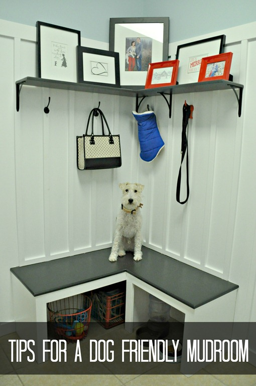 Tail Wagging Dog Friendly Mudroom Tips