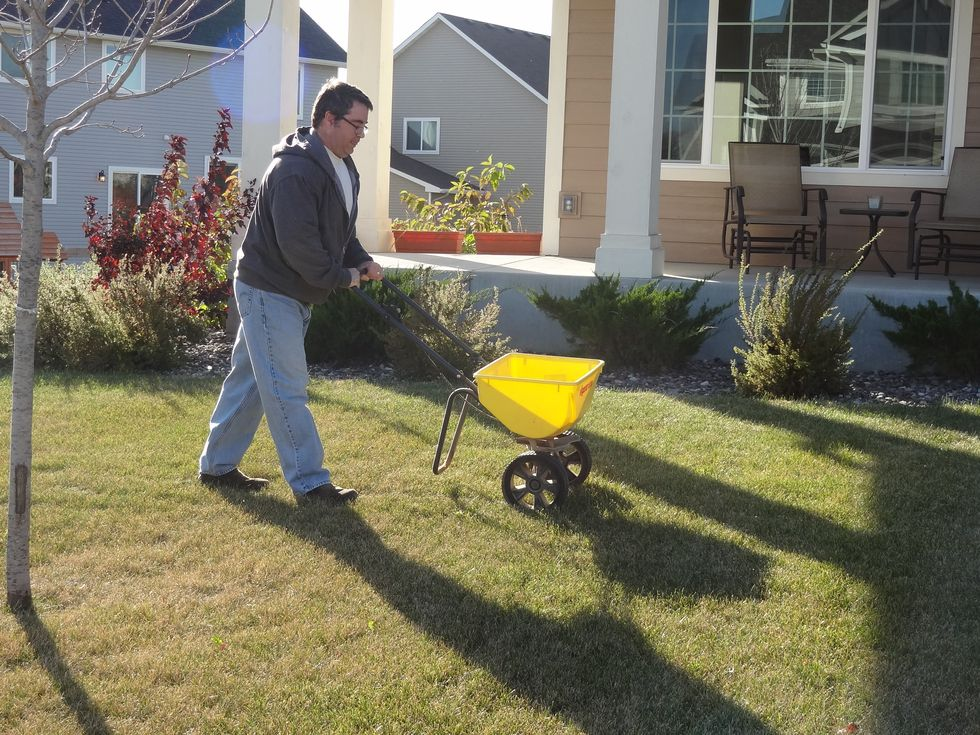 Should you fertilize your lawn this fall? Yes .Here is Why and How!